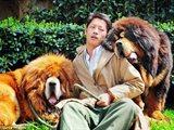 صيني اشترى اغلى كلب في العالم بمليوني دولار