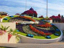 موعد افتتاح حديقة دبي ميراكل جاردن لموسم 2015 - 2016