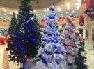 اجواء عيد الميلاد في سيتي سنتر السالمية