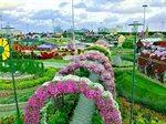 Closing Date of Dubai Miracle Garden Season 2016