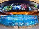 New OLED screen at Dubai Aquarium breaks Guinness World Record