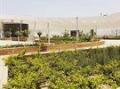 سيتم افتتاح مول 30 قريبا ... عنوان جديد للترفيه في منطقة أبو الحصانية الفحيحيل