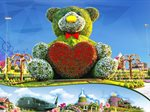 Dubai Miracle Garden Opening on 1st of November 2019
