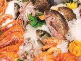 """مطعم """"كوتشينا"""" في فندق سيمفوني ستايل يقدم ليلة المأكولات البحرية كل يوم أربعاء"""
