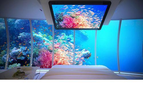 الصورة 206 بتاريخ 29 يناير / كانون الثاني 2013 - دبي تبني أكبر فندق تحت الماء في العالم