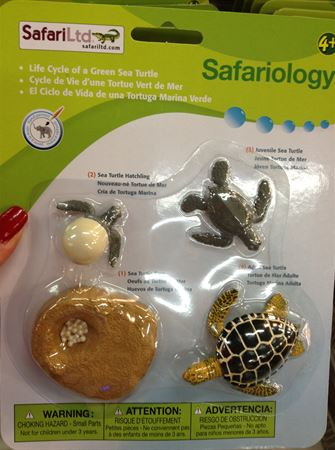 Safariology educational toys at Jarir Bookstore