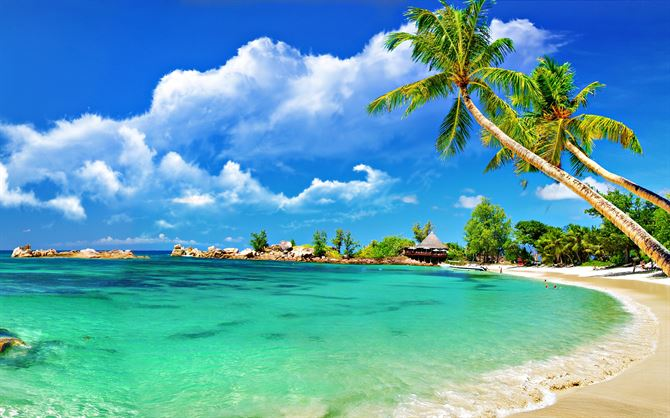 Lovely beaches around the world