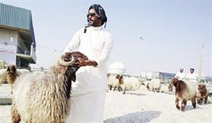 Sheep prices rise for Eid – 'Prices depend on vendor, origin and the day you buy'