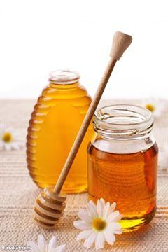 قصة وعبرة: النملة وقطرة العسل