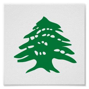 ارزة لبنان ... ارزة المجد