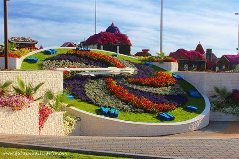 Photo 13171 on date 15 November 2015 - Dubai Miracle Garden - UAE