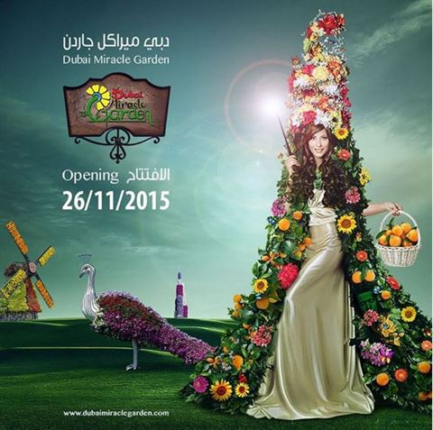 Opening date of Dubai Miracle Garden for 2015 - 2016 season