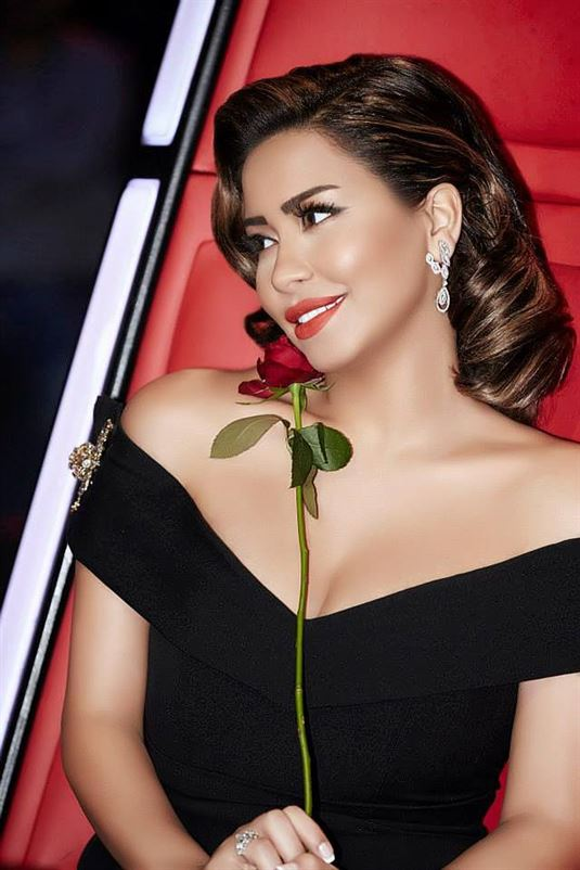 Shireen Abdelwahab best looks
