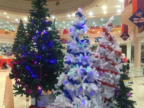 الوان واحجام منوعة من شجرة الميلاد