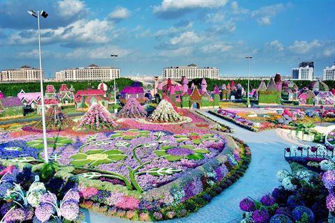 Dubai Miracle Garden 2016 - 2017 Season opening date