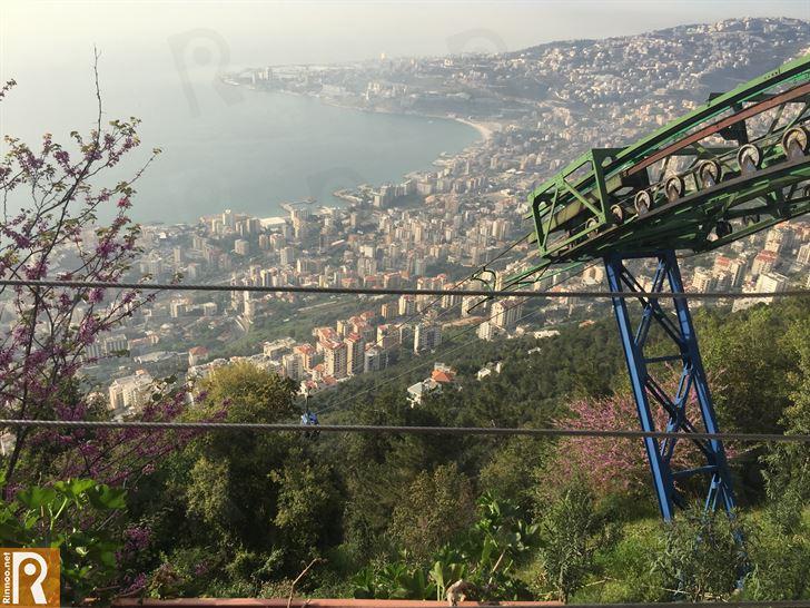 لبنان يتّحد ويفرح بعد سنوات من الأزمات