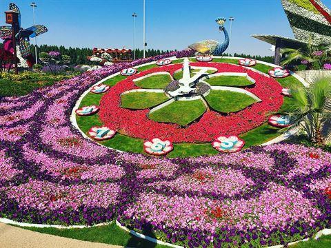 Photo 30065 on date 17 December 2016 - Dubai Miracle Garden - UAE