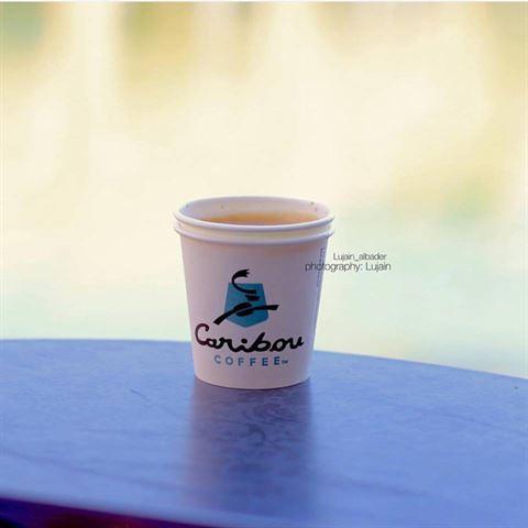 الصورة 21905 بتاريخ 8 مايو / أيار 2016 - قهوة كاريبو