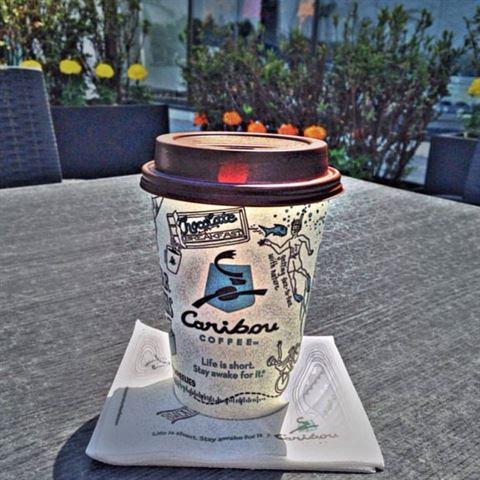 الصورة 21906 بتاريخ 8 مايو 2016 - قهوة كاريبو