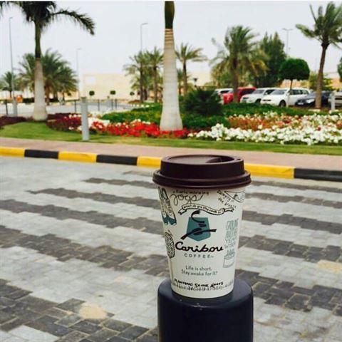 الصورة 21914 بتاريخ 8 مايو / أيار 2016 - قهوة كاريبو