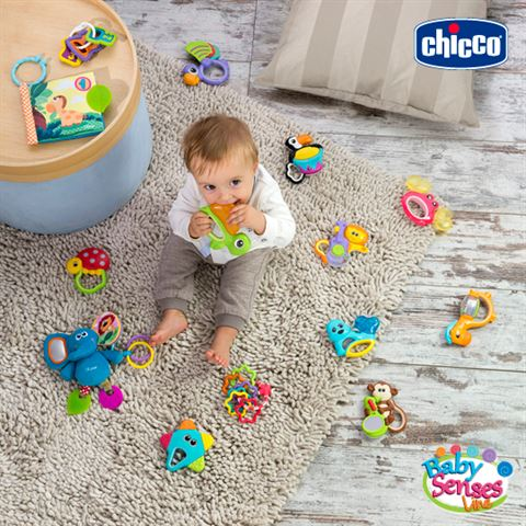 Photo 27812 on date 7 September 2016 - Chicco