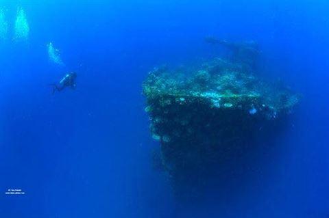 من حطام السفن الغارقة في الجزيرة