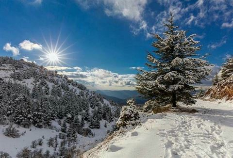 Amazing Snapshots of Winter in Lebanon