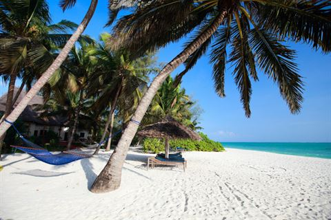 فلاي دبي تطلق قسم العطلات في سوق السفر العربي
