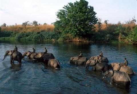 متنزه غرامبا الوطني: واحد من أقدم المنتزهات الوطنية في القارة، وهو أحد مواقع التراث الإنساني المعترف به من قبل اليونسكو منذ عام 1980 .