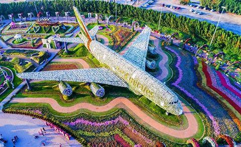 Dubai Miracle Garden Opening on 1st of November 2019