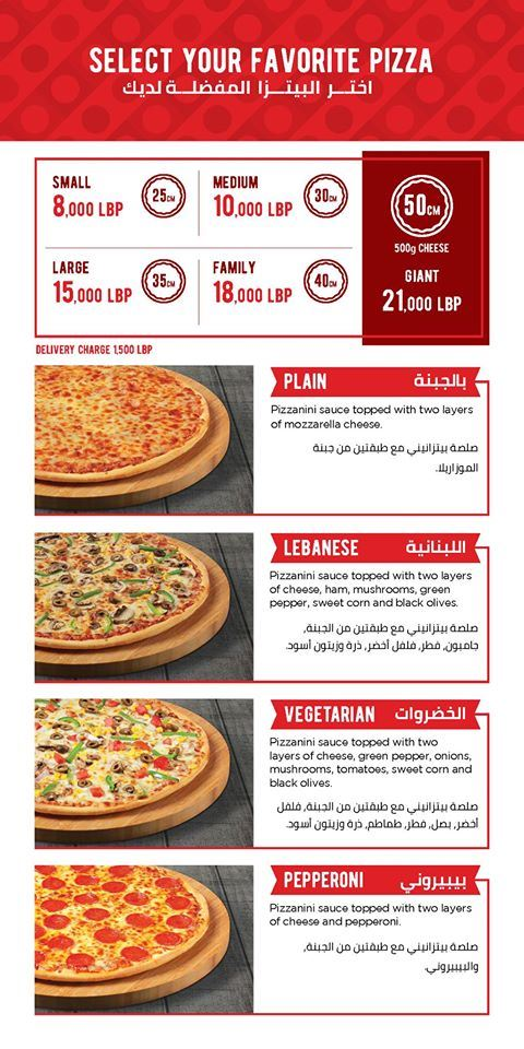 Latest offers from PIZZANINI for a limited time only!