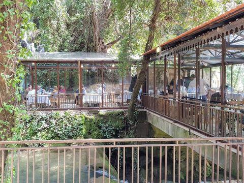 الصورة 61065 بتاريخ 3 أغسطس / آب 2019 - مطعم شلالات نبع مرشد - المختارة، لبنان