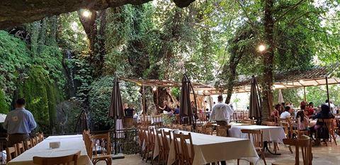 الصورة 61067 بتاريخ 3 أغسطس / آب 2019 - مطعم شلالات نبع مرشد - المختارة، لبنان