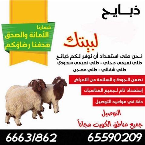 خدمة توصيل ذبايح غنم الى بيتك في جميع مناطق الكويت