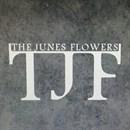 The Junes Flowers - Salmiya (Abdel Wahab Complex) - Kuwait