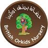 حضانة بريتش اوركيدز - الكويت