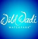 حديقة الالعاب المائية وايلد وادي - دبي، الإمارات